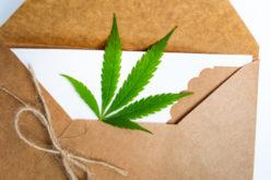 Betäubungsmitteldelikt – Sicherstellung einer Postsendung mit Betäubungsmitteln