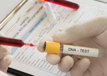 Anordnung einer DNA-Identitätsfeststellung bei Verdacht einer Straftat
