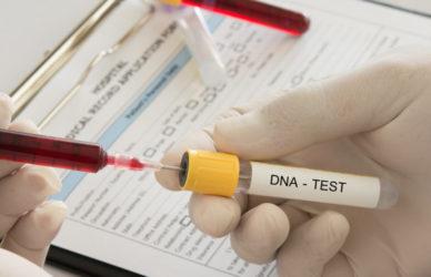 Anordnung einer DNA-Identitätsfeststellung nach vorläufiger Verfahrenseinstellung
