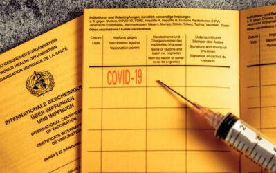 Imfausweis Fälschung: Strafen